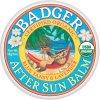 BADGER KIDS SPORT MINERAL SUNSCREEN CLEAR ZINC SPF 40 **NEW FORMULA**