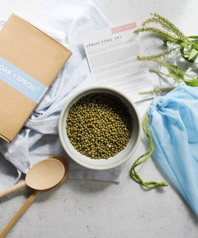 The Green Collective DIY Sprouting Kit